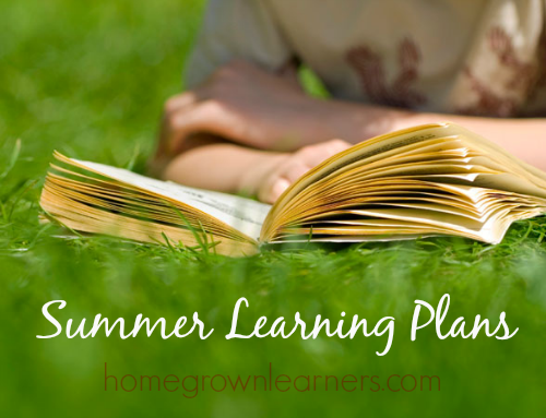 Summer Learning Plans and Purchasing Curriculum