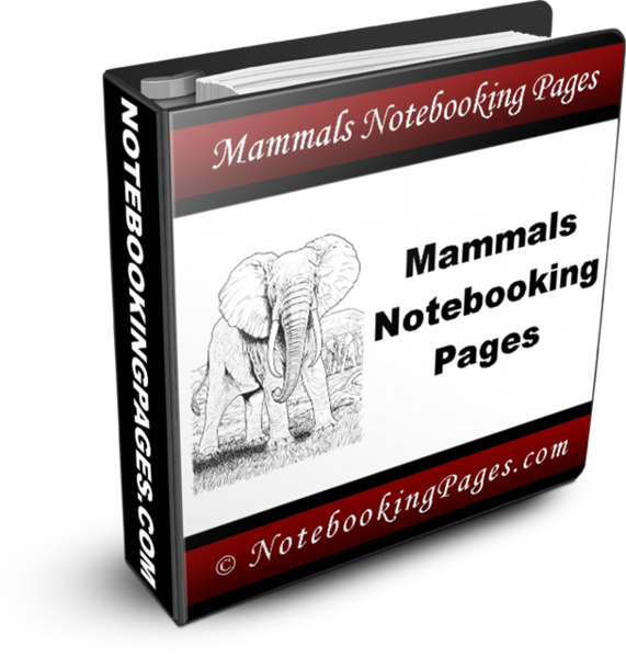 npc-mammals-binder-cover3ds571x600.png