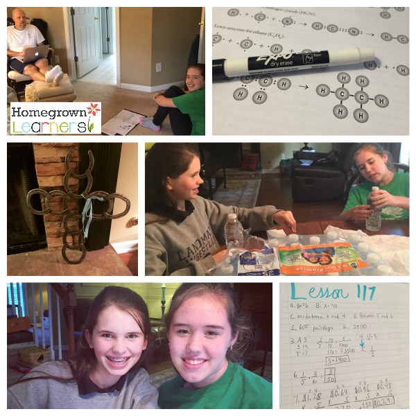 """Homeschool is so much more than """"School"""""""