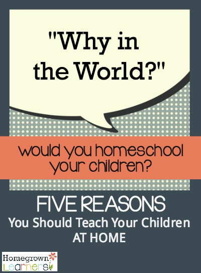 Why in the World Would You Homeschool Your Children?  Five Reasons You Should Teach Your Children at Home