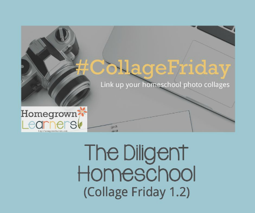 The Diligent Homeschool - Collage Friday 1.2