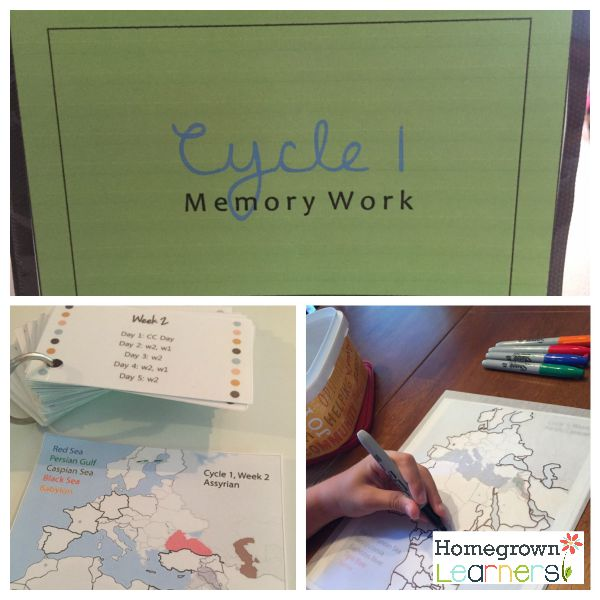 Homeschool Curriculum Choices - 5th Grade