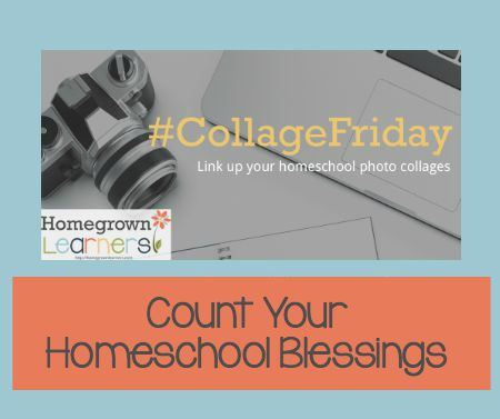 Count Your Homeschool Blessings - Collage Friday 1.4