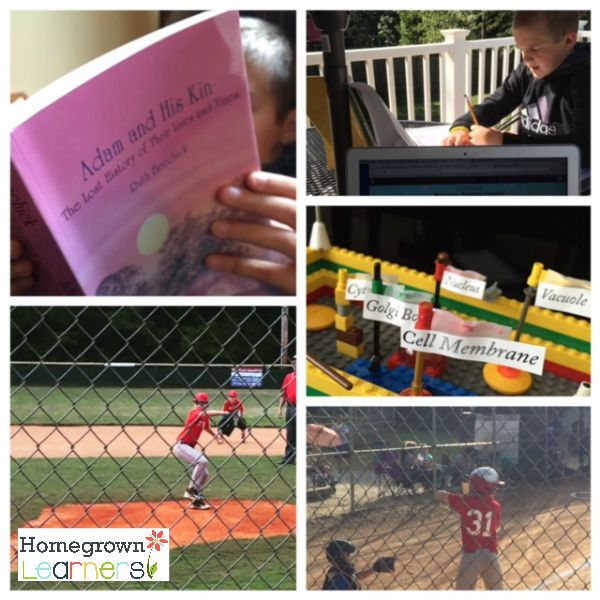 Opportunities and Advantages in Homeschool - Collage Friday at Homegrown Learners
