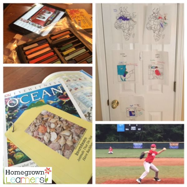 Just an Ordinary Homeschool Week - Collage Friday