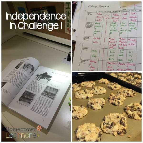Independence in Challenge I