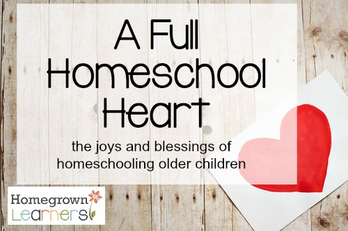 The Joys and Blessings of Homeschooling Older Children