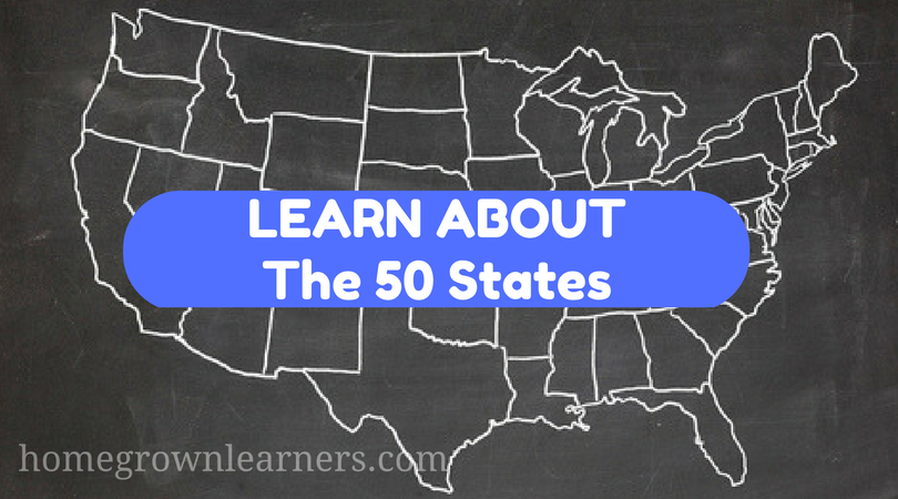 Learn the 50 States
