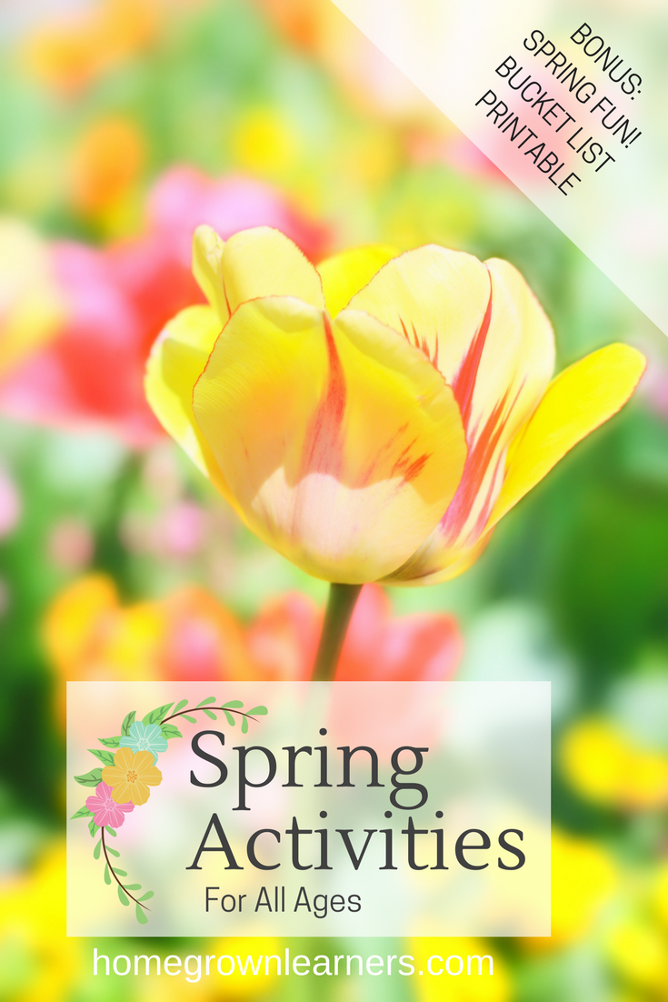 Spring Activitites for All Ages homegrownlearners.png
