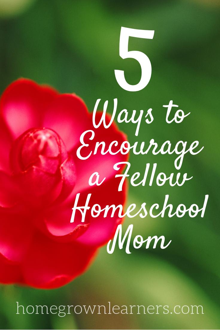 Five Ways to Encourage a Fellow #Homeschool Mom