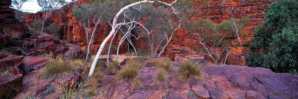 Trephina Gorge, MacDonnell Ranges, Northern Territory
