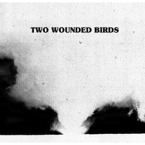 Two Wounded Birds.jpg
