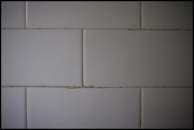 bathroomwall.jpg