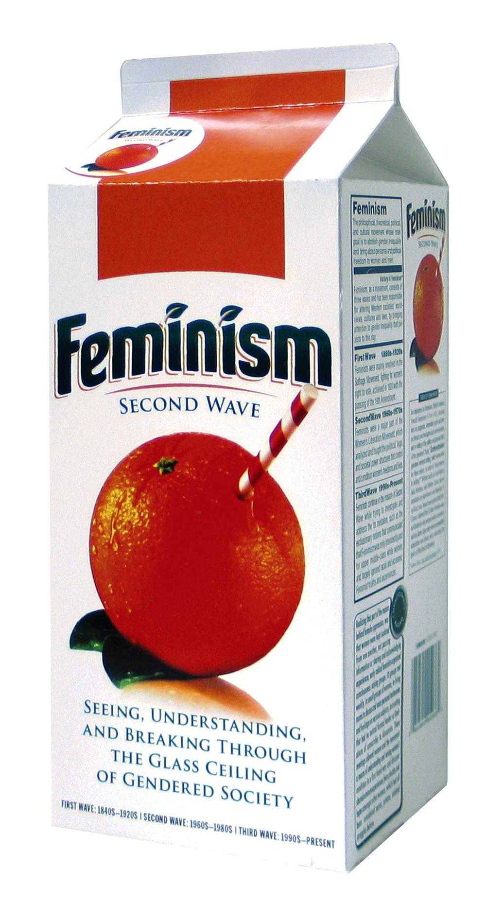 Feminism_package.jpg