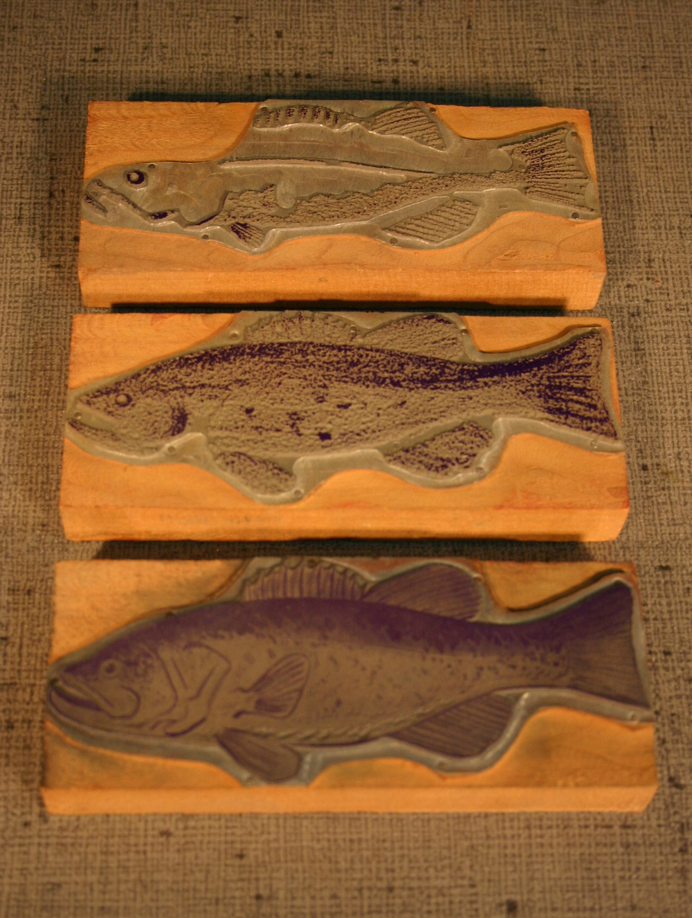 Fish Print Blocks