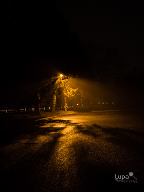 Rayos de luz-1.jpg