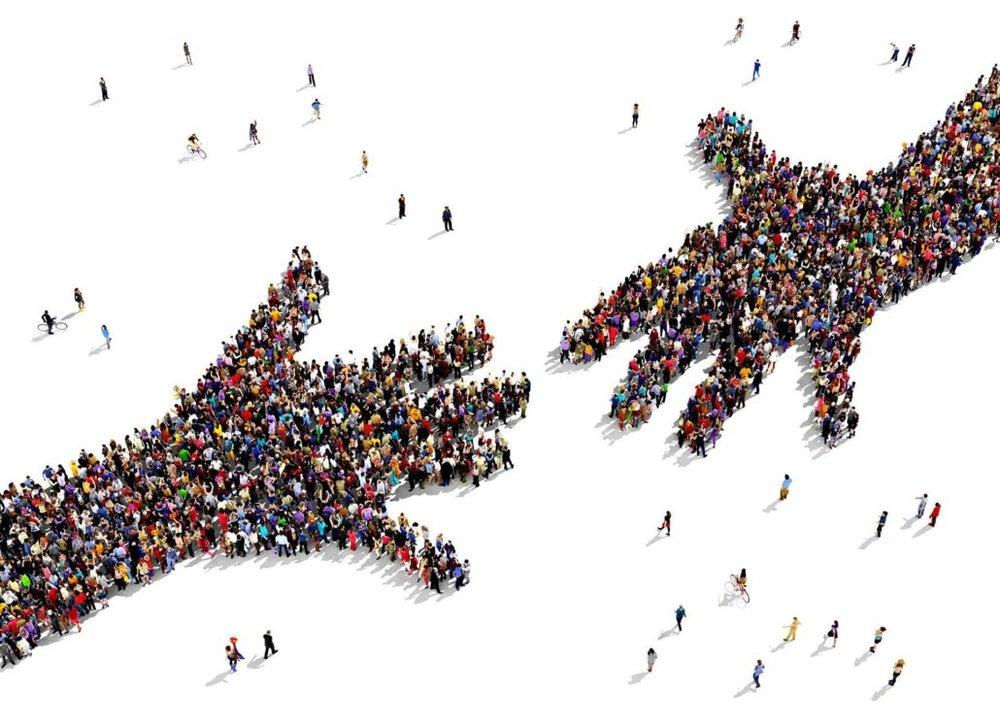 solidarite-mains-1030x749.jpg