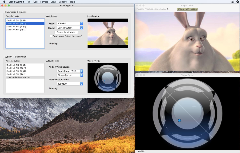 Black Syphon Free Syphon To Blackmagic Utility Vdmx Mac Vj Software