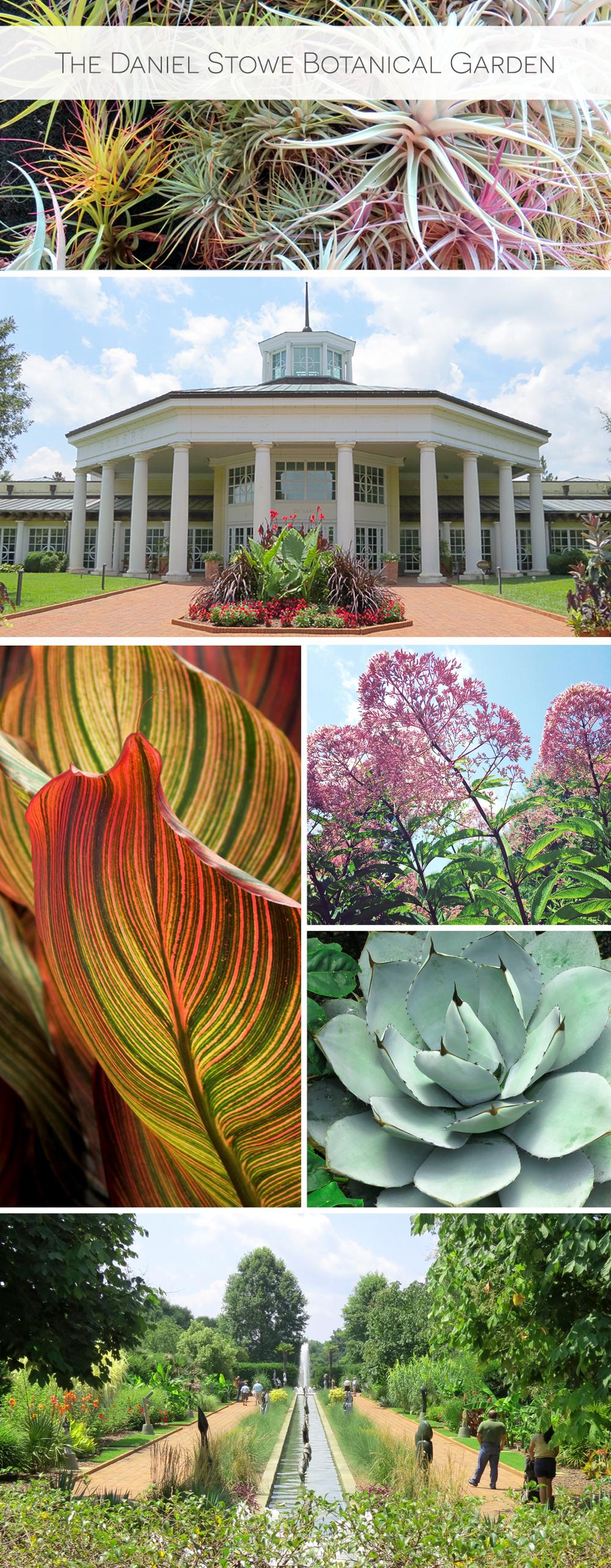 Adventures In Charlotte Daniel Stowe Botanical Garden Hennel Paper Co