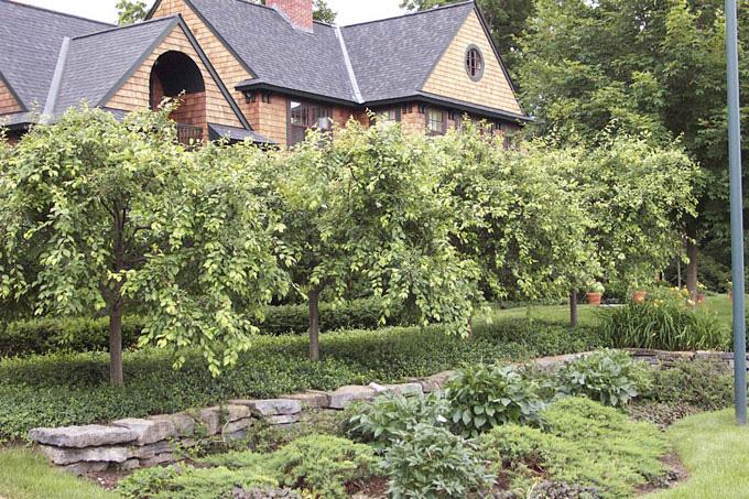 Shelburne Residence