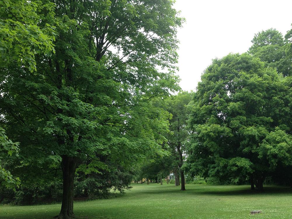 SHELBURNE PARADE GROUNDS -