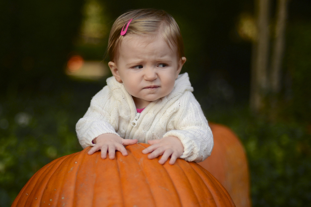 Grumpy at the Pumpkin Patch