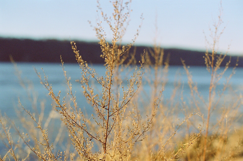 Hudson River, Nikon n80.