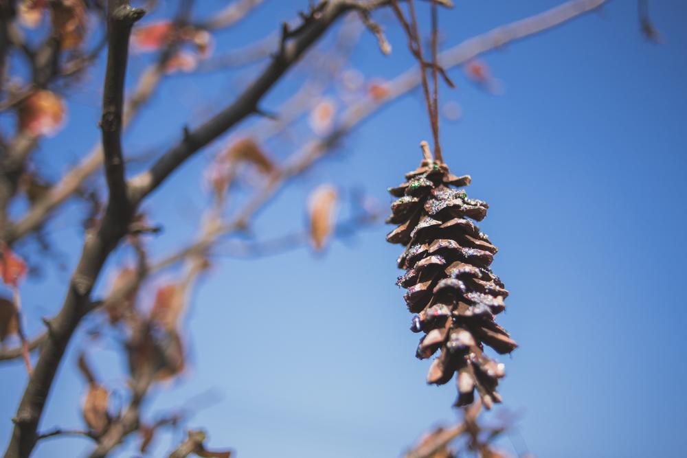 Glittery pine cones.