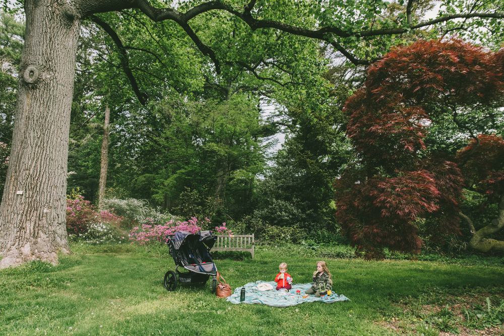 Planting Fields Arboretum | Francesca Russell, Long Island Photographer