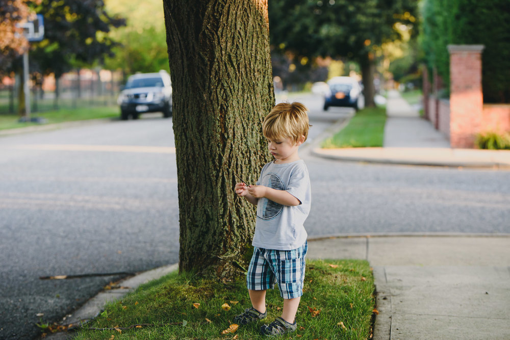 Francesca Russell Photography | Long Island Storytelling Photographer | Logan under a tree