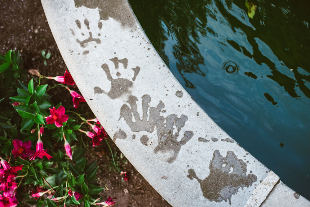 Wet handprints on the fountain at Adelphi University.