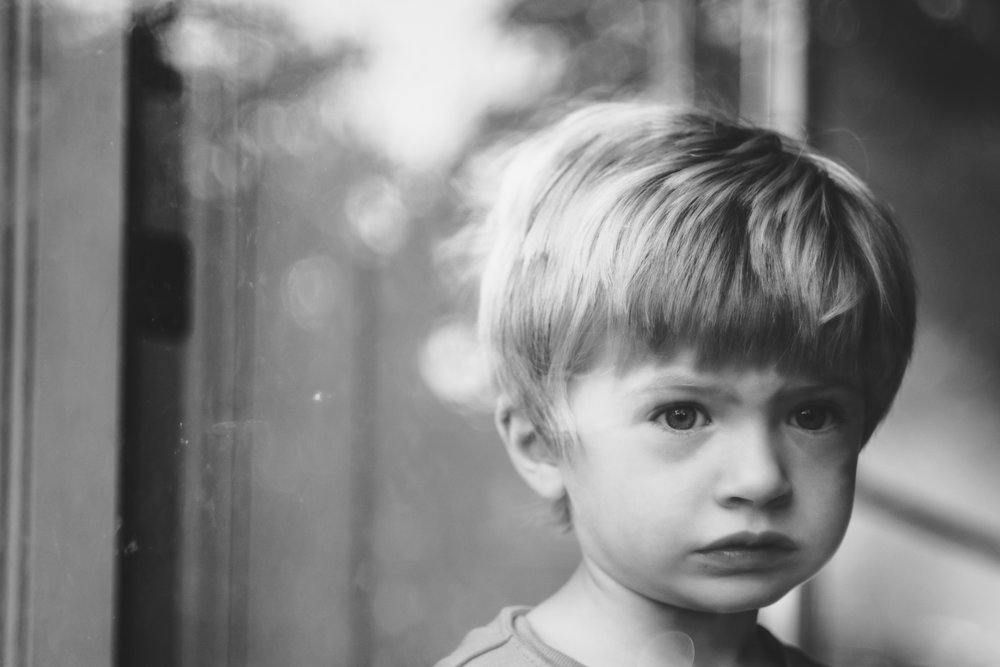 Portrait of boy through storm door.