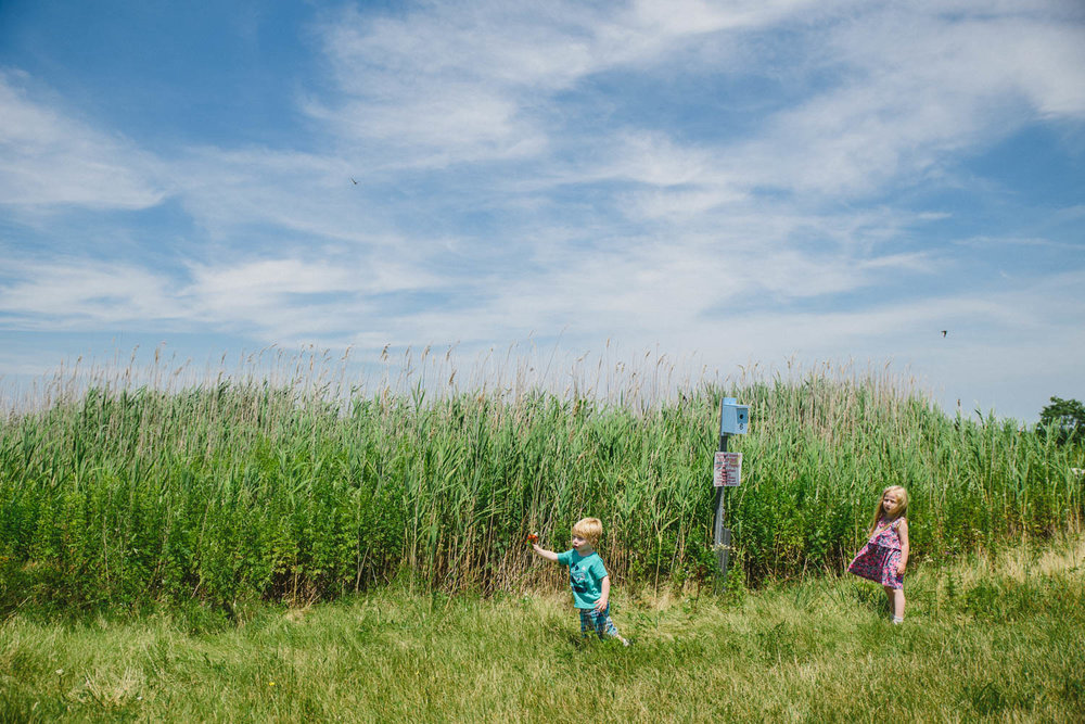 Children running through the grass at Norman Levy Preserve in Merrick.