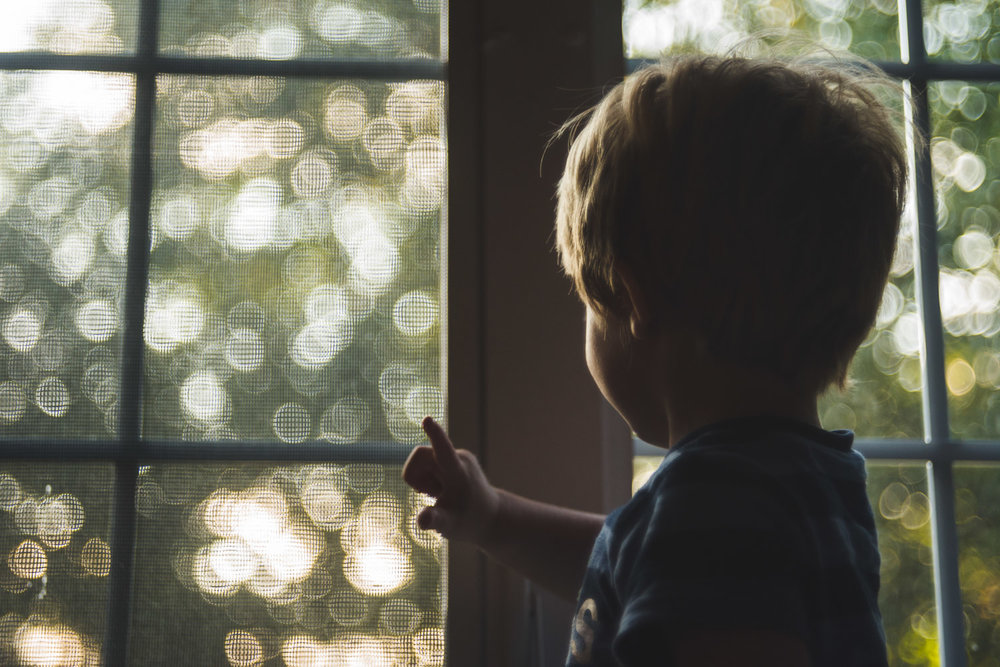 Toddler boy looking out window at sparkly tree-dappled sunset.