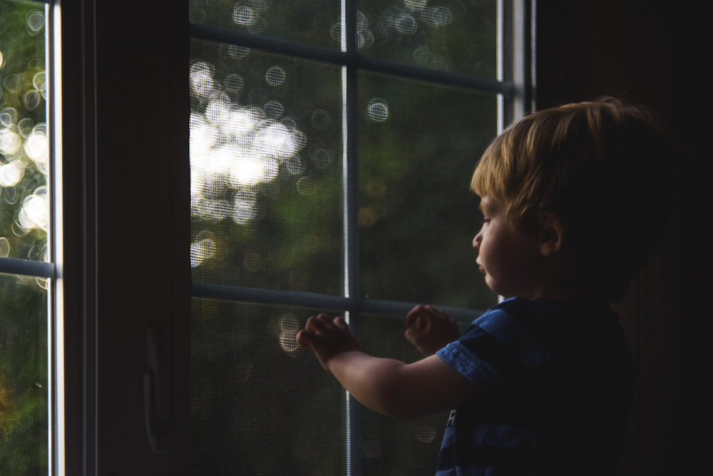 Toddler boy watching the golden sunset through window.