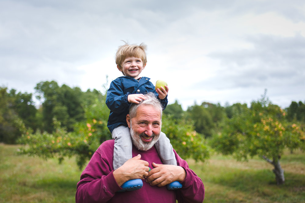 Little boy on grandfather's shoulders at Philip Orchards in New York.