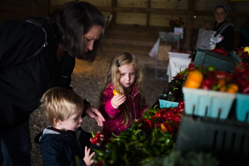 Children looking at peppers at the Copake-Hillsdale Farmer's Market