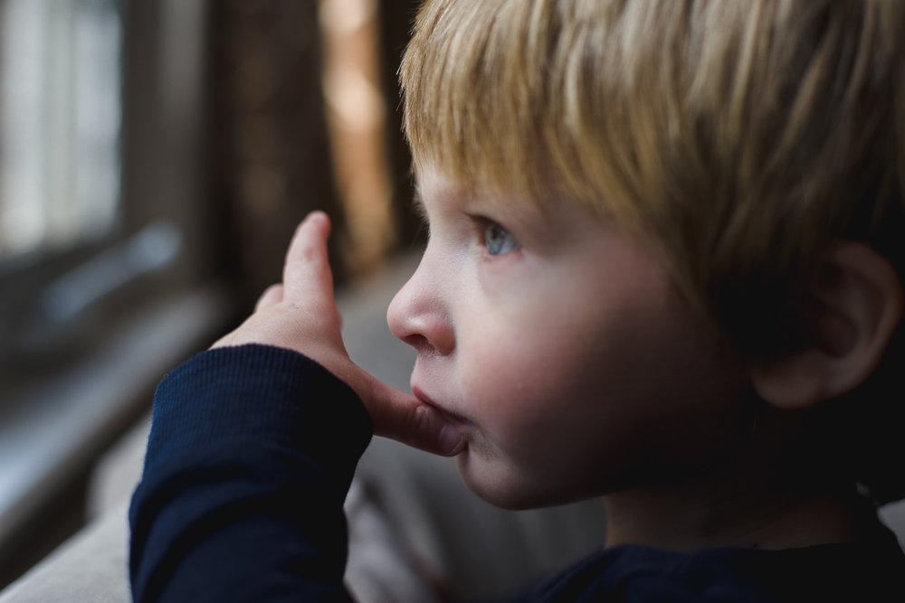 Portrait of little boy looking out a window.