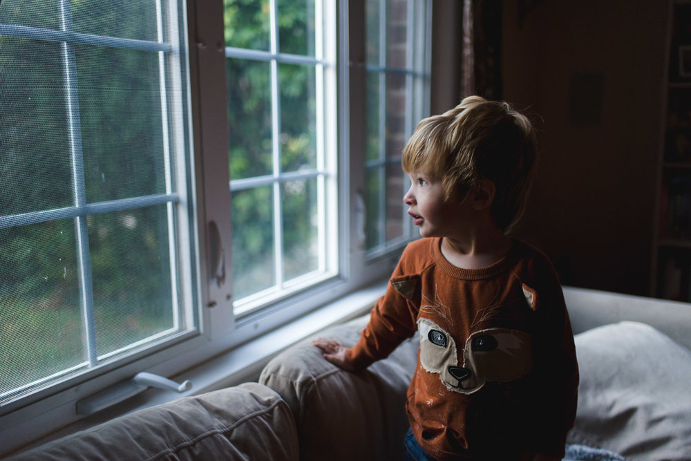 Little boy in fox shirt looking out the window.