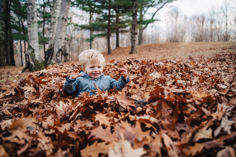 Little boy plays in leaf pile.