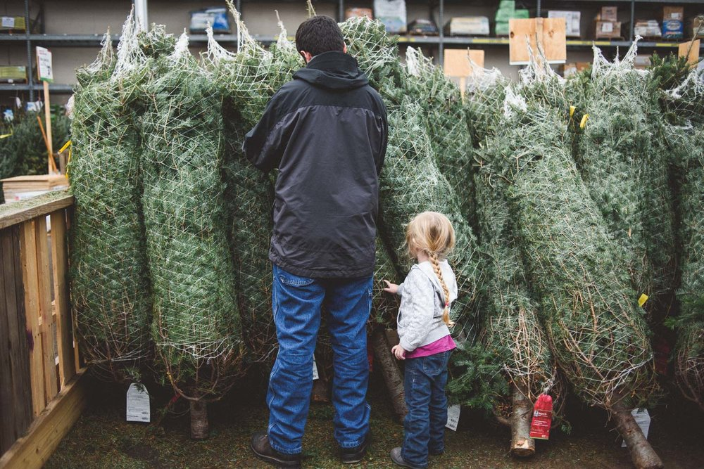 Dad and daughter shopping for a Christmas tree.