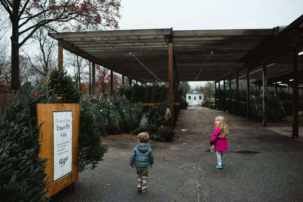 A boy and girl walk through the Christmas trees at Hicks Nursery.