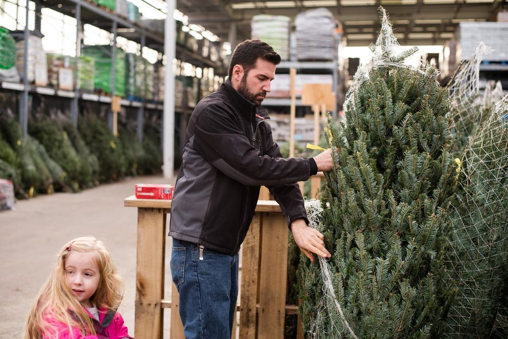 Father and daughter shopping for Christmas trees.