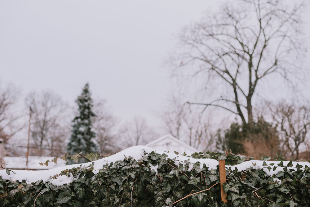 A snowy fence.
