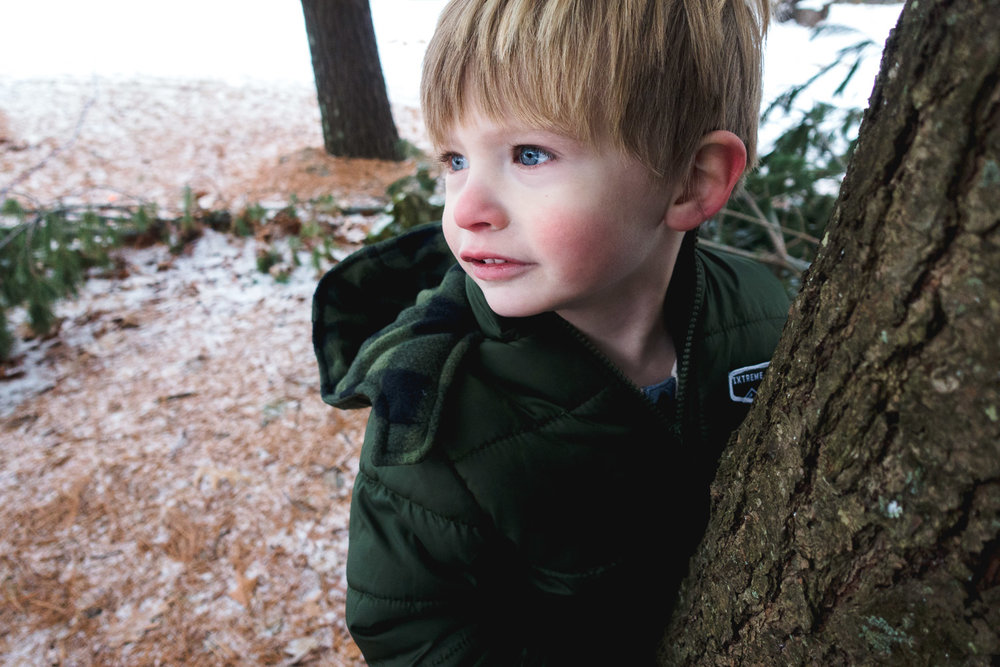 Little boy peering out from behind a tree.