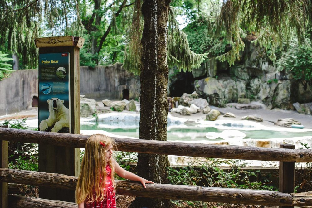 A girl explores the Bronx Zoo.