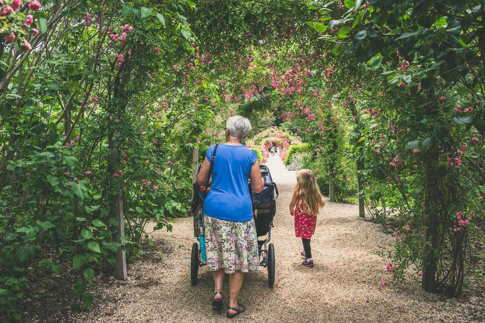 A family walks around Planting Fields Arboretum.