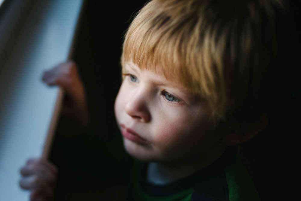 Portrait of a little boy looking out a window