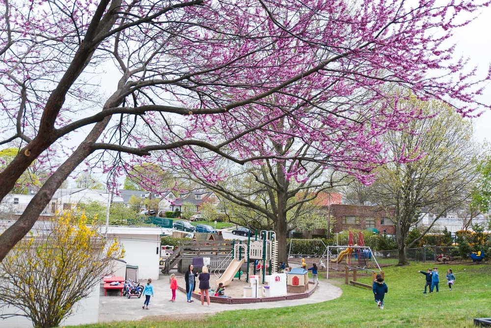 Garden City Nursery School in the spring.