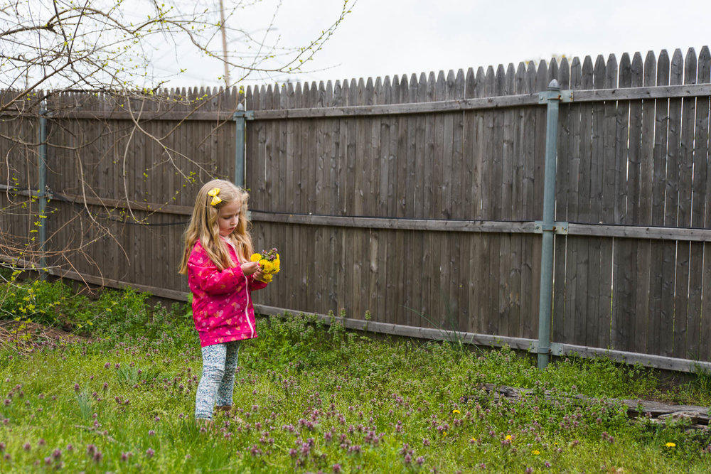 Little girl picking flowers near a fence.